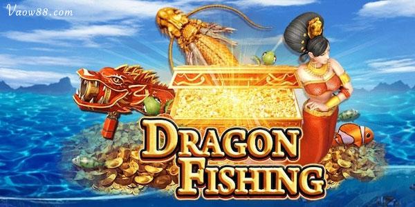 Game Dragon Fish là game gì?