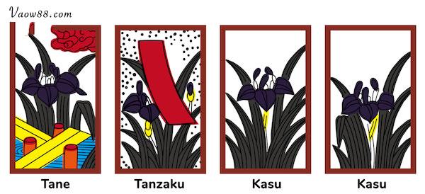 Tháng năm tượng trưng bởi hoa Diên Vĩ