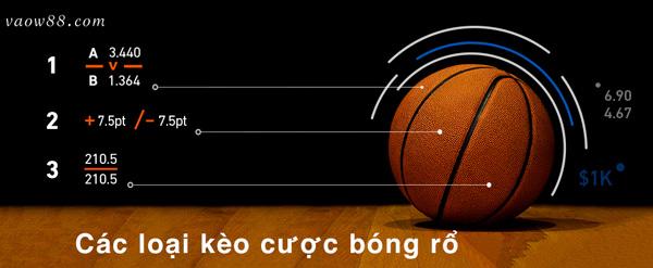 Các thể loại kèo cược cực kỳ phổ biến khi tham gia cá cược bóng rổ W88